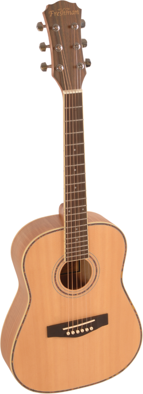 Maple Ridge FA1 Travel-Size Dreadnought Limited